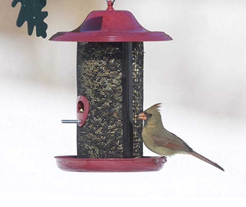 Red Rock Twin Bird Feeders