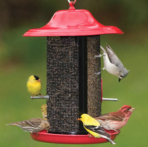 Red-Rock-Twin-Feeder