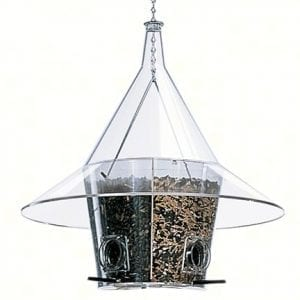 Perch Squirrel Proof Bird Feeder With Dividers