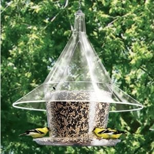 Clear Mandarin Sky Cafe Squirrel Proof Bird Feeder
