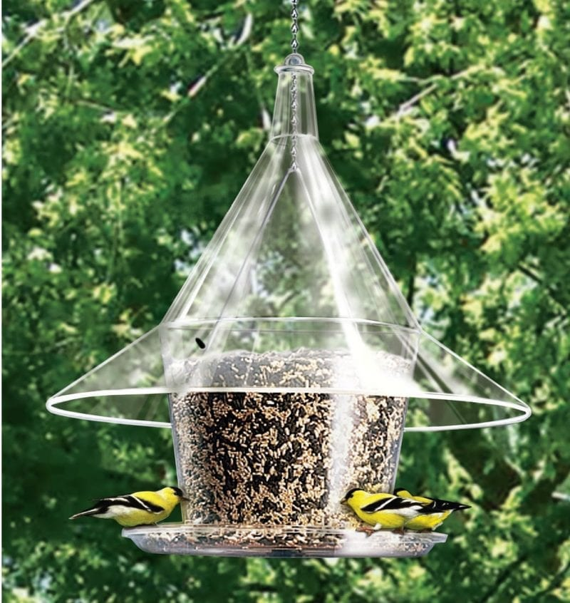 Mandarin Sky Cafe Bird Feeder