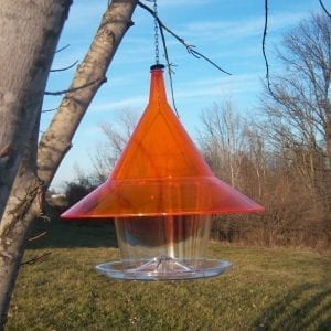 Orange Sky Cafe Squirrel Proof Bird Feeder Hopper
