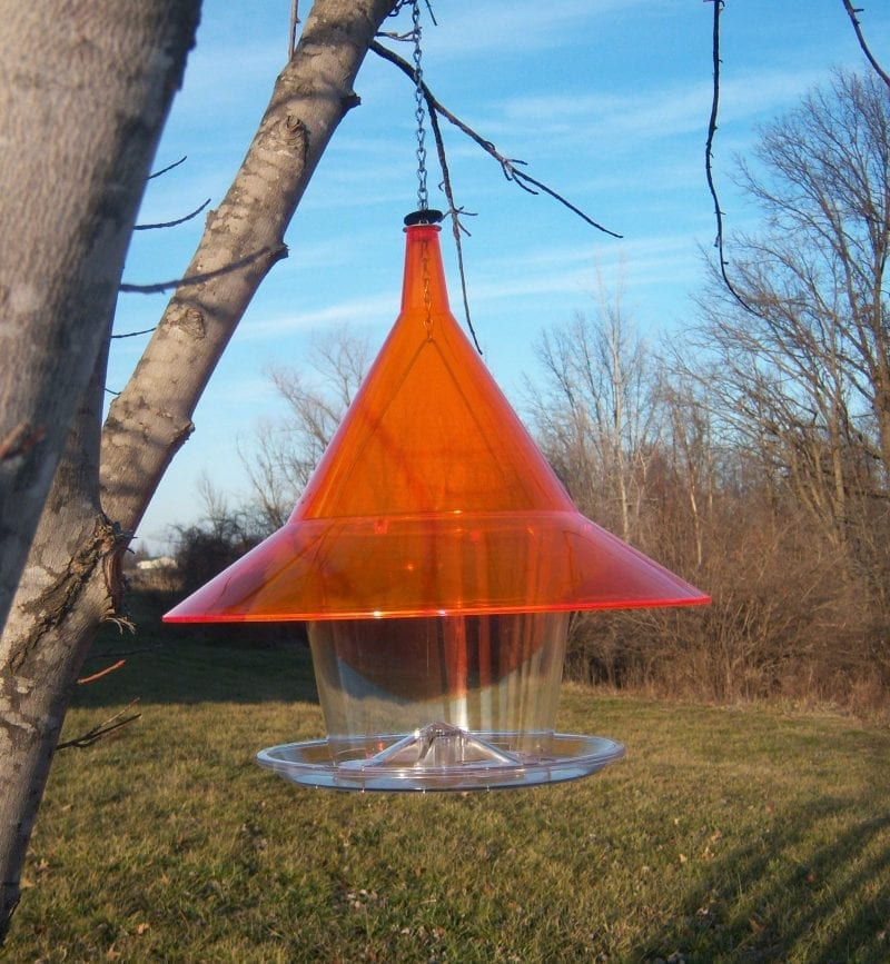 Orange Sky Cafe Squirrel Proof Bird Feeder Hopper