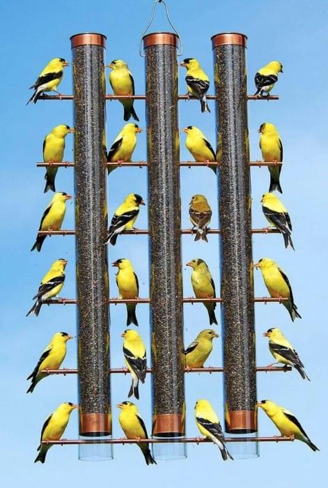 Finches Favorite 3-Tube Bird Feeders - Copper