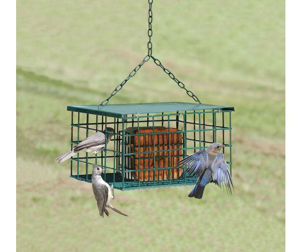 Squirrel Resistant Suet Palace Bird Feeders