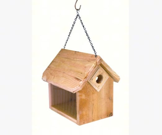 Songbird Essentials Hanging Bluebird Feeders SETC114